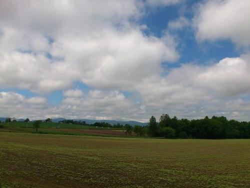 美瑛の丘の写真_b0106766_14382659.jpg