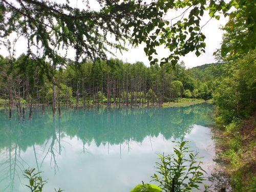 青い池の写真_b0106766_854514.jpg
