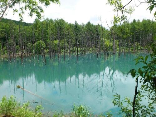 青い池の写真_b0106766_8545240.jpg