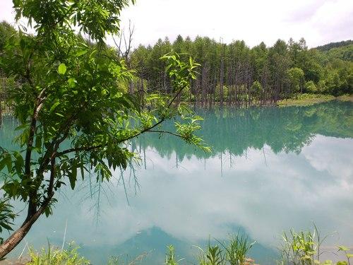 青い池の写真_b0106766_8545266.jpg