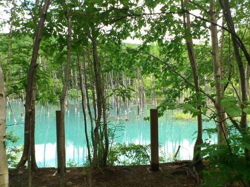 青い池の写真_b0106766_8545386.jpg