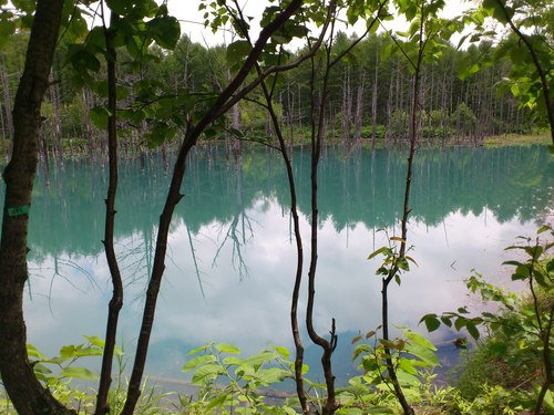 青い池の写真_b0106766_8545388.jpg