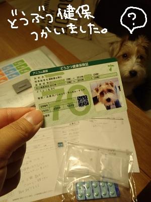 b0092580_381129.jpg