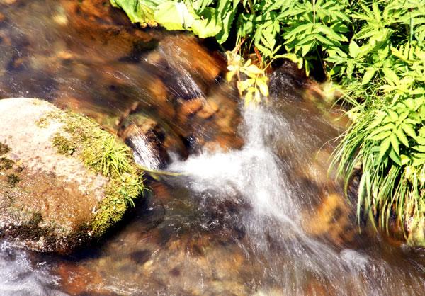 梅雨の晴れ間の岩木山、小坂七滝など_a0136293_15424798.jpg