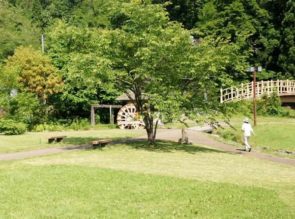 梅雨の晴れ間の岩木山、小坂七滝など_a0136293_1543532.jpg