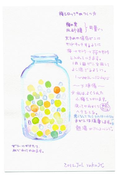 梅シロップの作り方_e0247108_15495775.jpg
