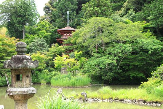 浄瑠璃寺 九体阿弥陀仏_e0048413_1654152.jpg