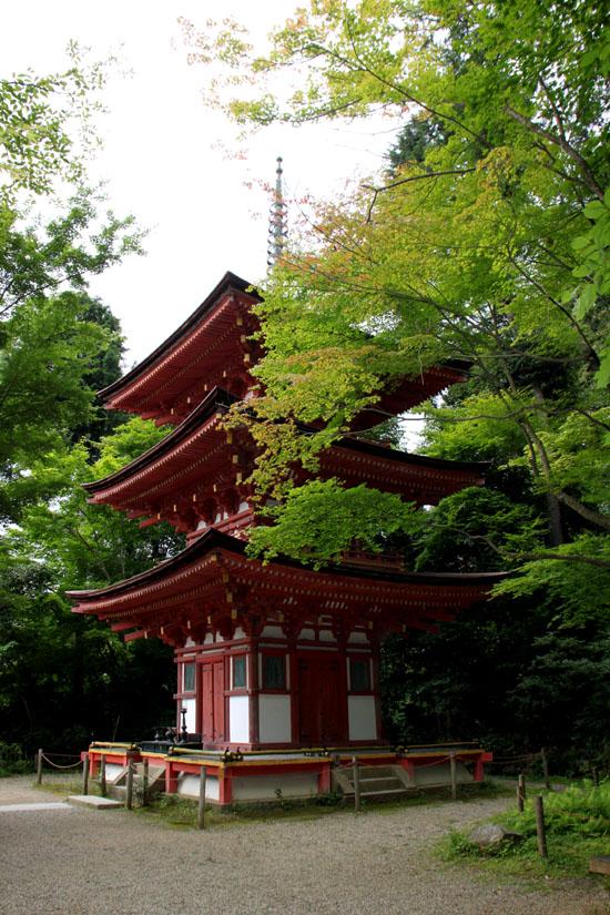 浄瑠璃寺 九体阿弥陀仏_e0048413_1655272.jpg