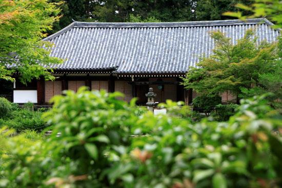 浄瑠璃寺 九体阿弥陀仏_e0048413_166113.jpg