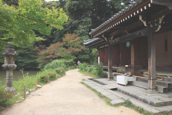 浄瑠璃寺 九体阿弥陀仏_e0048413_1661131.jpg