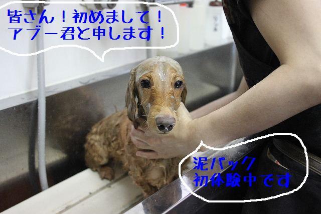 こんばんわぁ~~!!_b0130018_1582081.jpg