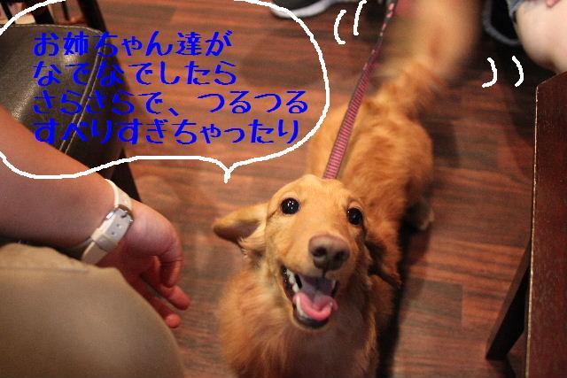 こんばんわぁ~~!!_b0130018_1591691.jpg