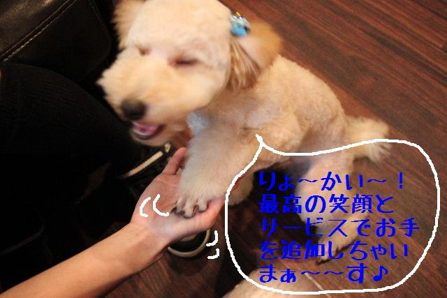 こんばんわぁ~~!!_b0130018_2121057.jpg
