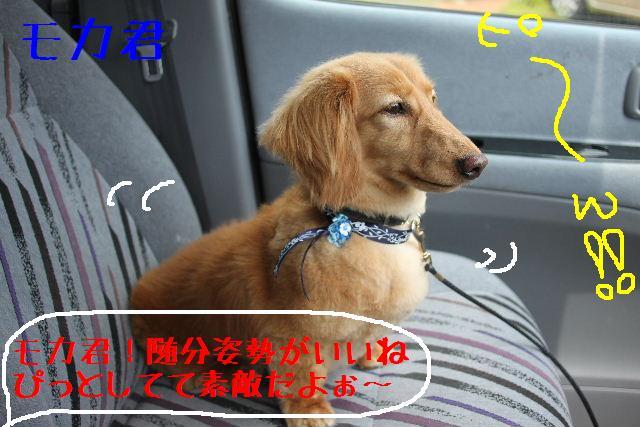 こんばんわぁ~~!!_b0130018_255563.jpg