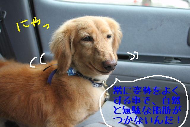 こんばんわぁ~~!!_b0130018_255945.jpg