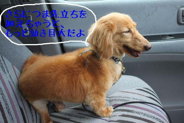こんばんわぁ~~!!_b0130018_261112.jpg