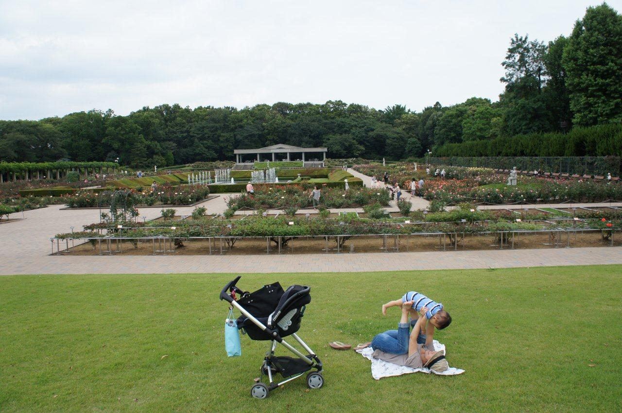 週末は植物公園へ_e0253026_1493981.jpg