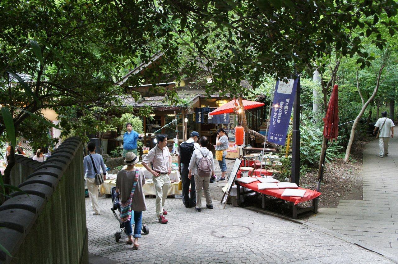 週末は植物公園へ_e0253026_1494734.jpg