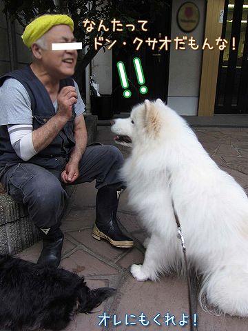 真昼の決闘_c0062832_1947975.jpg
