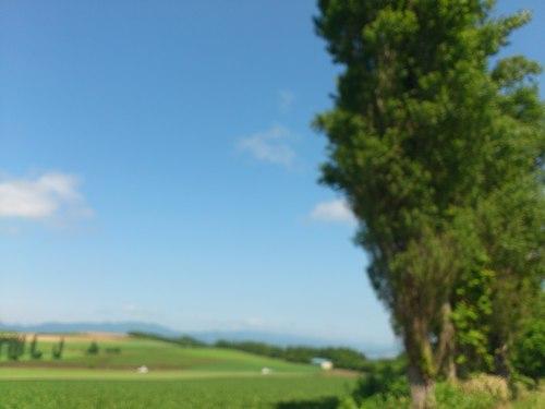 富良野の景色_b0106766_0543493.jpg