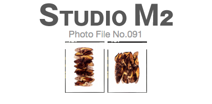 STUDIO M2 Photo File No.091「羽 タペストリー」_a0002672_20422174.jpg