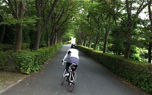 伊豆へ_c0185674_21505115.jpg