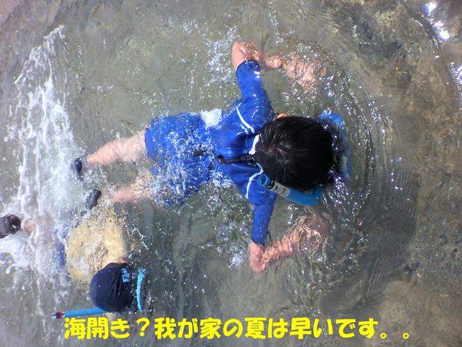f0183484_2045397.jpg