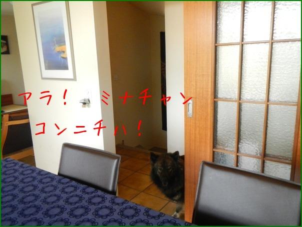 b0245488_5103396.jpg