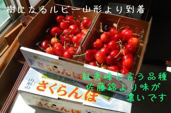 b0101991_16392685.jpg