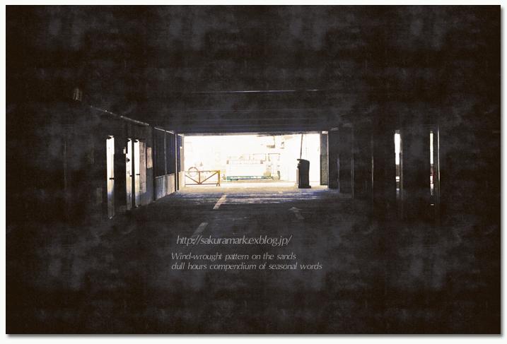 暗闇の向こう側・・・。_f0235723_19433790.jpg