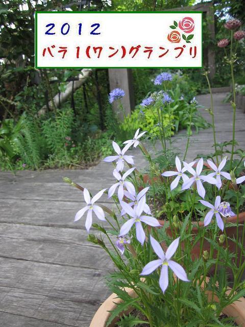 c0234938_14181814.jpg