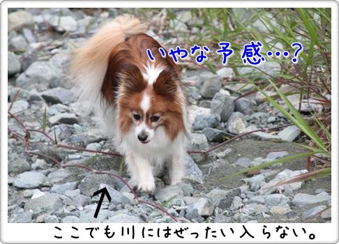 d0013149_22451147.jpg