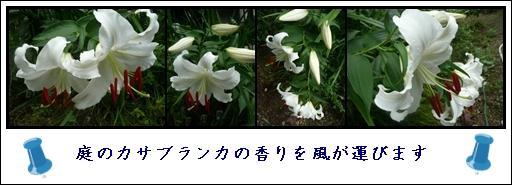 f0224350_0362443.jpg