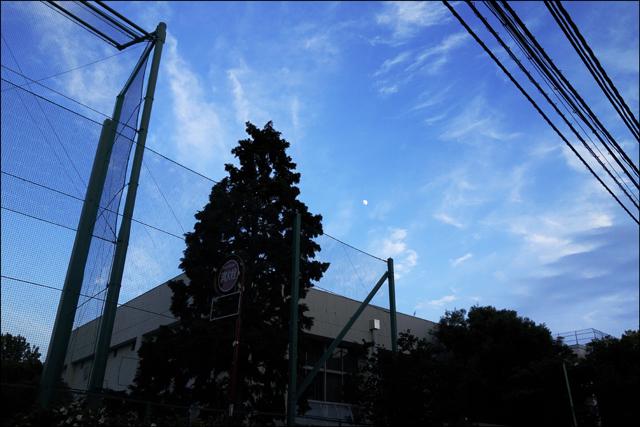 友ありき梅雨の晴れ間の宵酔うて_a0031363_1123675.jpg