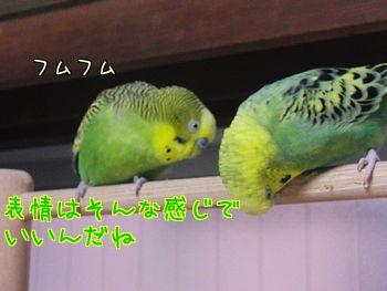 f0196665_1019450.jpg