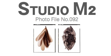 STUDIO M2 Photo File No.092「ポジFilmから 羽」_a0002672_20375480.jpg