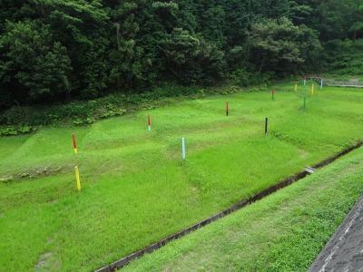 幸田町の深溝断層(ふこうぞ 三河地震を起こした深溝断層見学 その1 :