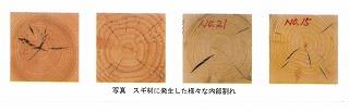 人工乾燥と天然乾燥 (1)_f0059988_15593343.jpg