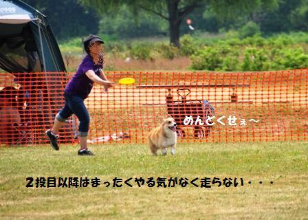 f0212597_659198.jpg