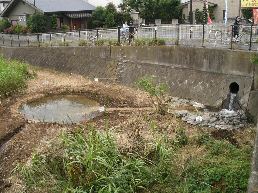御成橋のワンド完成_a0258102_1832880.jpg