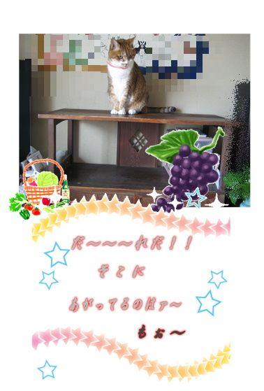 e0255638_10265170.jpg