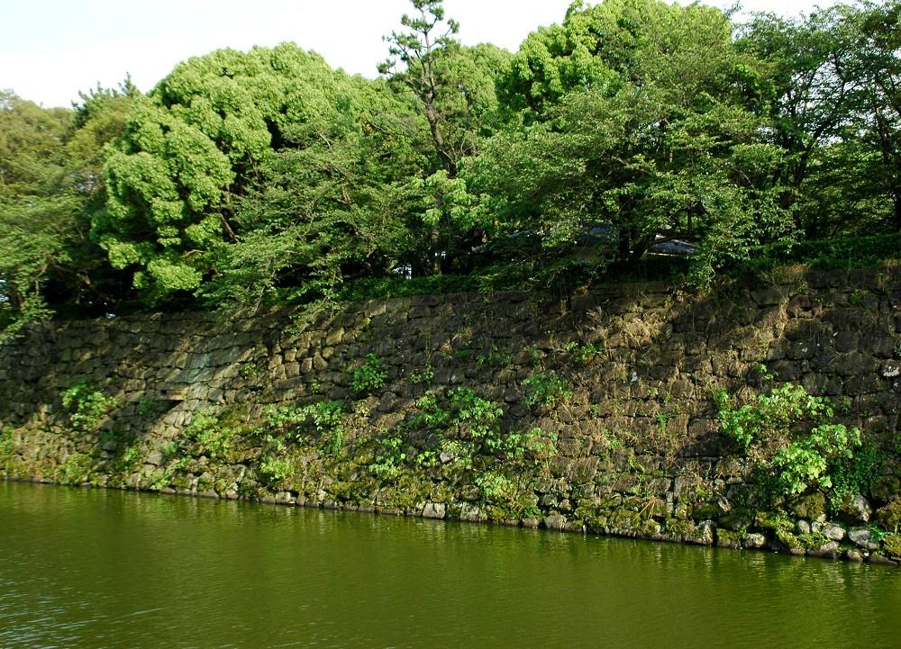 和歌山城公園にて_b0093754_22364470.jpg