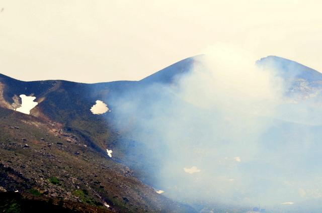 十勝岳のエゾシマリスとルリビタキ。_b0165760_20234.jpg