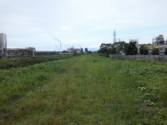 1ヶ月で伸びる夏草は強敵 滝川の土手の法面_f0141310_723466.jpg