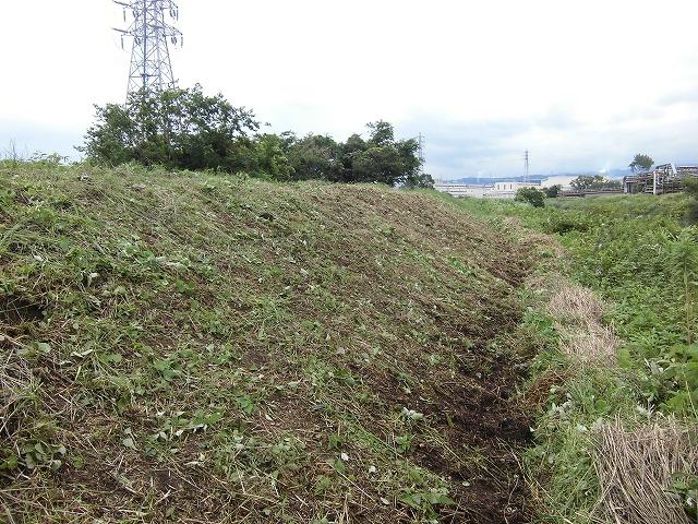 1ヶ月で伸びる夏草は強敵 滝川の土手の法面_f0141310_741843.jpg