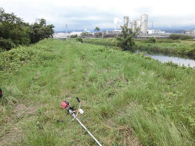 1ヶ月で伸びる夏草は強敵 滝川の土手の法面_f0141310_744113.jpg