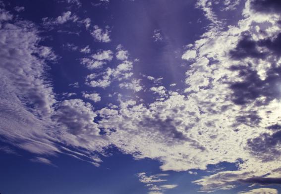 f0231460_2011274.jpg