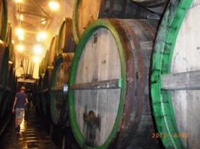 Czech Republic ピルスナービール発祥の地ピルゼン_e0195766_6193912.jpg