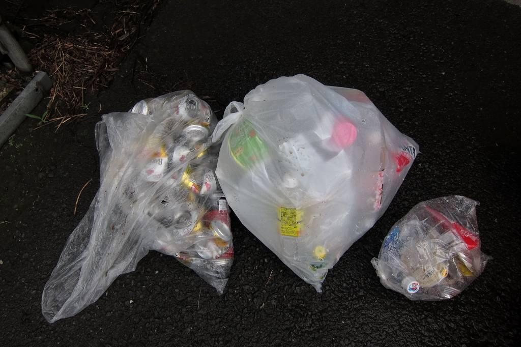 カワセミ幼鳥ホバからGET/資源ゴミの収集_b0024798_5595528.jpg