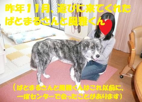 f0121712_14501793.jpg